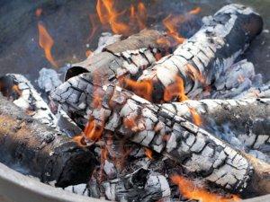 Les multiples avantages des cendres du barbecue